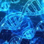 国民性と性格と思想とDNA